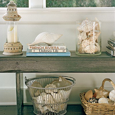 {groups Of Shells From Coastalliving.com}