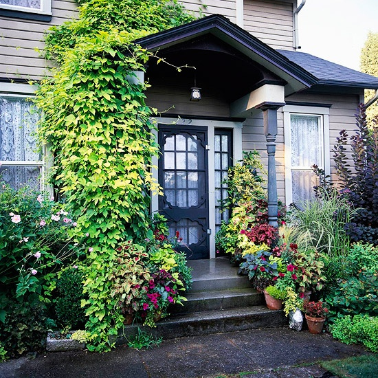 Freshly squeezed 5 beautiful front door ideas the Container plant ideas front door