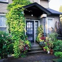 Freshly Squeezed: 5 Beautiful Front Door Ideas